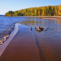 Камская осень :: Любовь Чунарёва