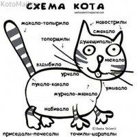 Полное гы!!!! :: kolyeretka