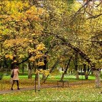 Осень гуляет по паркам и скверам....... :: Елена Швецова