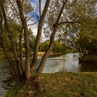 Река Цна :: Александр Тулупов