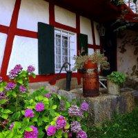Старый двор.. :: Эдвард Фогель