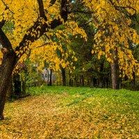 В последний день сентября :: Валерий Симонов