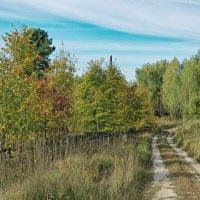 Дорожка в осень :: Дмитрий Конев