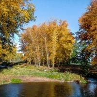 Осень на реке :: Вячеслав Баширов