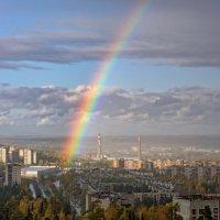 Капельки дождя распались на разноцветные лучики :: Вячеслав Овчинников