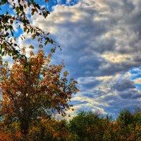 Осень :: Юрий Фёдоров