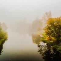 Туман......... :: Александр Селезнев