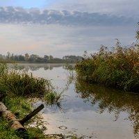 Утро возле озера :: Юрий Бичеров