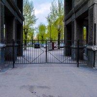 Ворота во двор :: Света Кондрашова