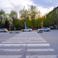 Переходим дорогу :: Света Кондрашова
