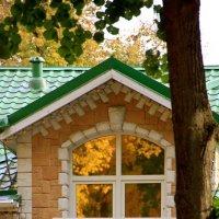 Осень в окне :: Алексей Дмитриев