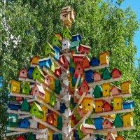 Скворечниковый дом в Нижнекамске :: Сергей Тагиров