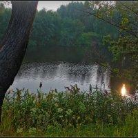 туманный вечер на Нерли :: Дмитрий Анцыферов