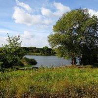 Вид на озеро со стороны :: Маргарита Батырева