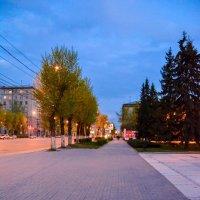 вечерняя прогулка :: Света Кондрашова