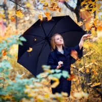 Осенний дождь :: Андрей