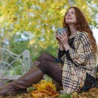 Осеннее настроение :: Юрий Захаров