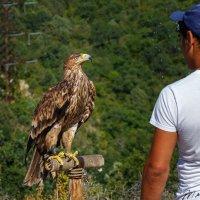В гостях на Грозовом перевале :: Андрей Гриничев