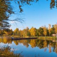 День в октябре 2 :: Виталий