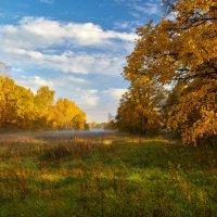 Свет рыжей осени... :: Roman Lunin