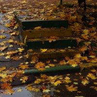Осень в самом соку :: Андрей Лукьянов
