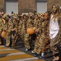 День тигра :: Лилия Гиндулина