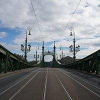 Мост Свободы. Будапешт :: Алёна Савина