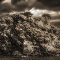 Жизнь на скалах :: Ирина Falcone