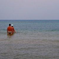 Дельфины на пляже! :: Валентина Данилова