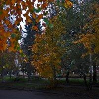 Осенний скверик :: Юрий