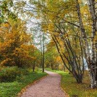 Осень в парке 8 :: Виталий