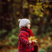 Осень :: Ольга Никонорова
