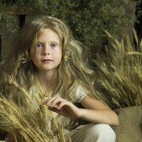 Ангел с пшеничными локонами :: Светлана Колимбет