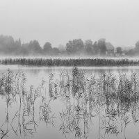 Озеро Пулиярве, Эстония :: Priv Arter