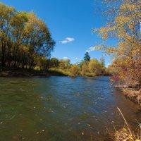 Река уносит сброшенные листья :: Анатолий Иргл