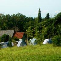Палаточный лагерь :: Надежда