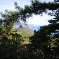 На горе Каракули-Кая :: Руслан Newman