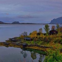 Тихо и так красиво на берегу Skjellbogen :: Ирэна Мазакина