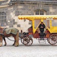 GPS-координаты для лошадки :: Николай Рогаткин