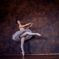 балерина :: Владислав Медведев