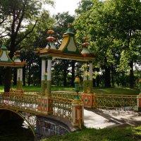 Китайские мотивы :: Ирина Шурлапова