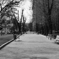 5 :: Дмитрий Паченков