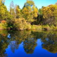 Вода как зеркало :: Милешкин Владимир Алексеевич