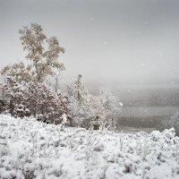 Снегопад. :: Поток
