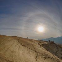 Прогулка по Баргузинской долине* :: Павел Федоров