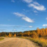 Осенняя дорога :: Nikita Volkov