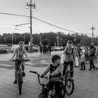 ватажка на велосипедах :: Лариса *