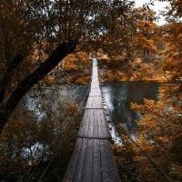 Подвесной мост в Хотылёво :: Алексей Клименко