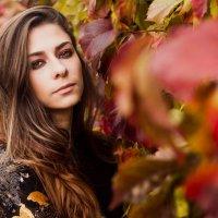 Осень 2 :: Евгений