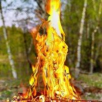 Тепло огня :: Владимир